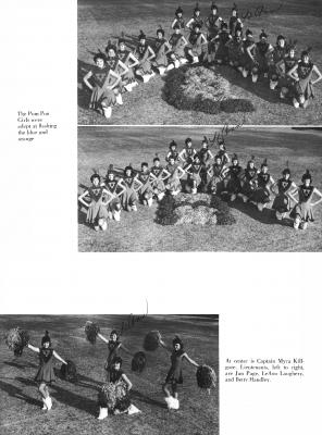 pg137-cal61