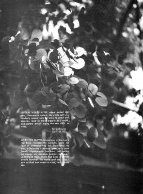 pg022-cal65