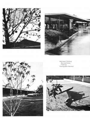 pg085-cal66