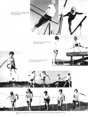 pg134-cal66