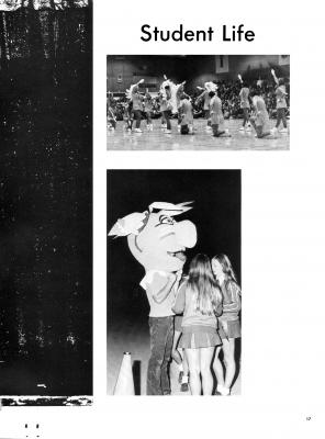 pg017-cal73