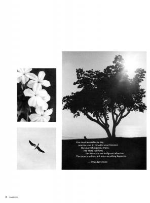 pg050-cal75