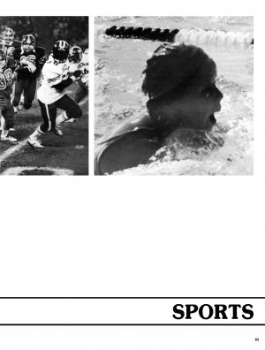 pg065-cal82